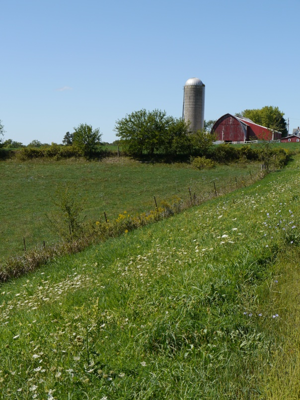Wisconsin farm silo image