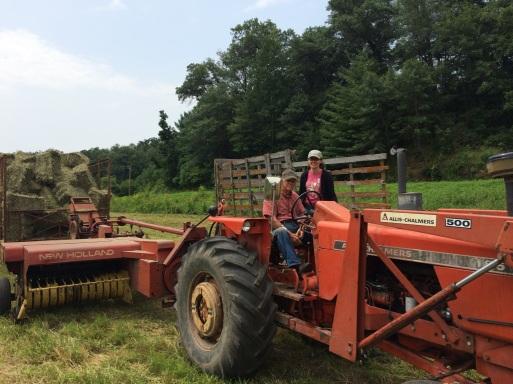 end of hay baling image.jpg
