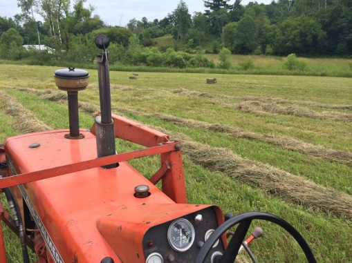 tractor view hayfield image.jpg